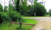 Randonnée Marche SAINT-JEAN-AUX-BOIS - en forêt de Compiègne_2_ruines gallo-romaines de Champlieu_les Petits Monts - Photo 166