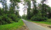 Randonnée Marche SAINT-JEAN-AUX-BOIS - en forêt de Compiègne_2_ruines gallo-romaines de Champlieu_les Petits Monts - Photo 165