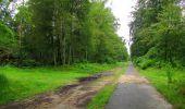 Randonnée Marche SAINT-JEAN-AUX-BOIS - en forêt de Compiègne_2_ruines gallo-romaines de Champlieu_les Petits Monts - Photo 253