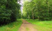 Randonnée Marche SAINT-JEAN-AUX-BOIS - en forêt de Compiègne_2_ruines gallo-romaines de Champlieu_les Petits Monts - Photo 218