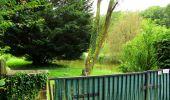 Randonnée Marche SAINT-JEAN-AUX-BOIS - en forêt de Compiègne_2_ruines gallo-romaines de Champlieu_les Petits Monts - Photo 9