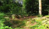 Randonnée Marche SAINT-JEAN-AUX-BOIS - en forêt de Compiègne_2_ruines gallo-romaines de Champlieu_les Petits Monts - Photo 151