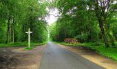 Randonnée Marche SAINT-JEAN-AUX-BOIS - en forêt de Compiègne_2_ruines gallo-romaines de Champlieu_les Petits Monts - Photo 230