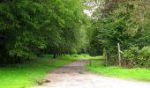 Randonnée Marche SAINT-JEAN-AUX-BOIS - en forêt de Compiègne_2_ruines gallo-romaines de Champlieu_les Petits Monts - Photo 42