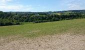 Randonnée Marche Namur - Wierde 10-07-2016 - Photo 3
