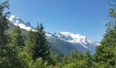 Randonnée Marche CHAMONIX-MONT-BLANC - TMB J1 MONTROC -TRIENT - Photo 6