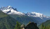 Randonnée Marche CHAMONIX-MONT-BLANC - TMB J1 MONTROC -TRIENT - Photo 5