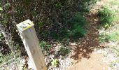 Randonnée Marche Unknown - anse eblain - Photo 9