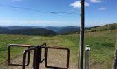 Trail Walk LA BRESSE - hohneck - Photo 4