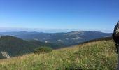 Trail Walk LA BRESSE - hohneck - Photo 1