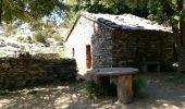 Trail Walk SILVARECCIO - Sant Angelo Vasinca - Photo 1