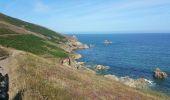 Randonnée Marche nordique PLOGOFF - boucle pointe du raz  - Photo 25