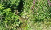 Randonnée Marche nordique PLOGOFF - boucle pointe du raz  - Photo 9