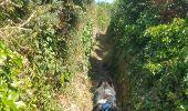 Randonnée Marche nordique PLOGOFF - boucle pointe du raz  - Photo 8