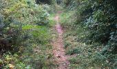 Randonnée Marche BREAL-SOUS-MONTFORT - 21.08.2016 - 30 k BRÉAL - Photo 3