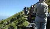 Trail Walk GLANDAGE - joucou  - Photo 14