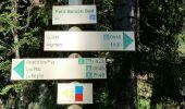 Randonnée Marche CHAMONIX-MONT-BLANC - CHAMONIX ( Balcon sud) - Photo 4