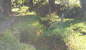 Randonnée Marche Braine-le-Comte - Ronquières 15,2 km - Photo 21