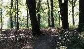Randonnée Marche Braine-le-Comte - Ronquières 15,2 km - Photo 20