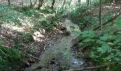 Randonnée Marche Braine-le-Comte - Ronquières 15,2 km - Photo 18