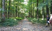 Randonnée Marche Braine-le-Comte - Ronquières 15,2 km - Photo 16