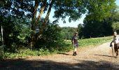 Randonnée Marche Braine-le-Comte - Ronquières 15,2 km - Photo 7