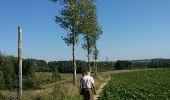 Randonnée Marche Braine-le-Comte - Ronquières 15,2 km - Photo 5