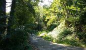 Randonnée Marche Braine-le-Comte - Ronquières 15,2 km - Photo 3