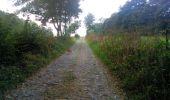 Randonnée Marche Mettet - Marche ADEPS Oret 18-09-2016 - Photo 3