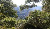 Trail Walk Anhée - De la plante à Godinne - Photo 4