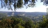 Trail Walk Anhée - De la plante à Godinne - Photo 3