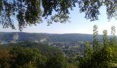 Trail Walk Anhée - De la plante à Godinne - Photo 2