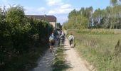 Trail Walk Anhée - De la plante à Godinne - Photo 1