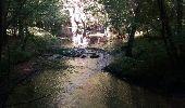 Trail Walk CHARLAS - Charlas: gorges de la Save - Photo 2