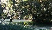 Trail Walk CHARLAS - Charlas: gorges de la Save - Photo 1