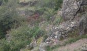 Trail Walk SAINT-ETIENNE-DE-SERRE - Pizette Magerouan - Photo 3
