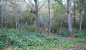 Randonnée Marche LONGPONT - en forêt de Retz_49_Longpont_ étangs de Javage_AR - Photo 14