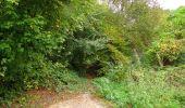 Randonnée Marche LONGPONT - en forêt de Retz_49_Longpont_ étangs de Javage_AR - Photo 102