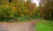 Randonnée Marche LONGPONT - en forêt de Retz_49_Longpont_ étangs de Javage_AR - Photo 133
