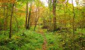 Randonnée Marche LONGPONT - en forêt de Retz_49_Longpont_ étangs de Javage_AR - Photo 20