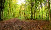 Randonnée Marche LONGPONT - en forêt de Retz_49_Longpont_ étangs de Javage_AR - Photo 32