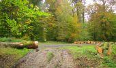 Randonnée Marche LONGPONT - en forêt de Retz_49_Longpont_ étangs de Javage_AR - Photo 71