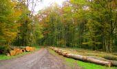 Randonnée Marche LONGPONT - en forêt de Retz_49_Longpont_ étangs de Javage_AR - Photo 73