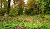Randonnée Marche LONGPONT - en forêt de Retz_49_Longpont_ étangs de Javage_AR - Photo 69