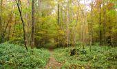 Randonnée Marche LONGPONT - en forêt de Retz_49_Longpont_ étangs de Javage_AR - Photo 123