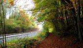 Randonnée Marche LONGPONT - en forêt de Retz_49_Longpont_ étangs de Javage_AR - Photo 10