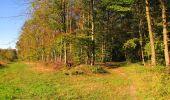 Randonnée Marche LONGPONT - en forêt de Retz_49_Longpont_ étangs de Javage_AR - Photo 21