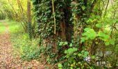 Randonnée Marche LONGPONT - en forêt de Retz_49_Longpont_ étangs de Javage_AR - Photo 114