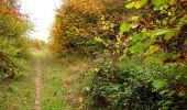 Randonnée Marche LONGPONT - en forêt de Retz_49_Longpont_ étangs de Javage_AR - Photo 49