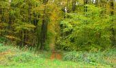 Randonnée Marche LONGPONT - en forêt de Retz_49_Longpont_ étangs de Javage_AR - Photo 131